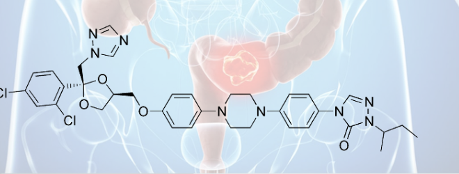 Itraconazole Targets Cell Cycle Heterogeneity In Colorectal Cancer The Healthy Living Group